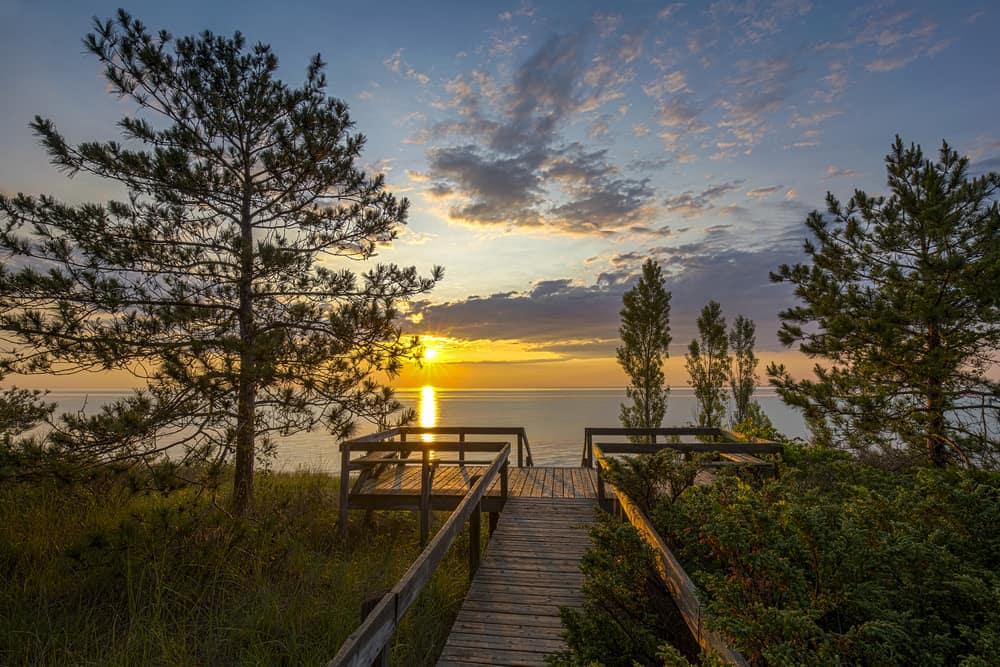 Shutterstock.com/Brian Lasenby
