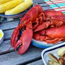 Lobster-Safari auf <span>Prince Edward Island</span>