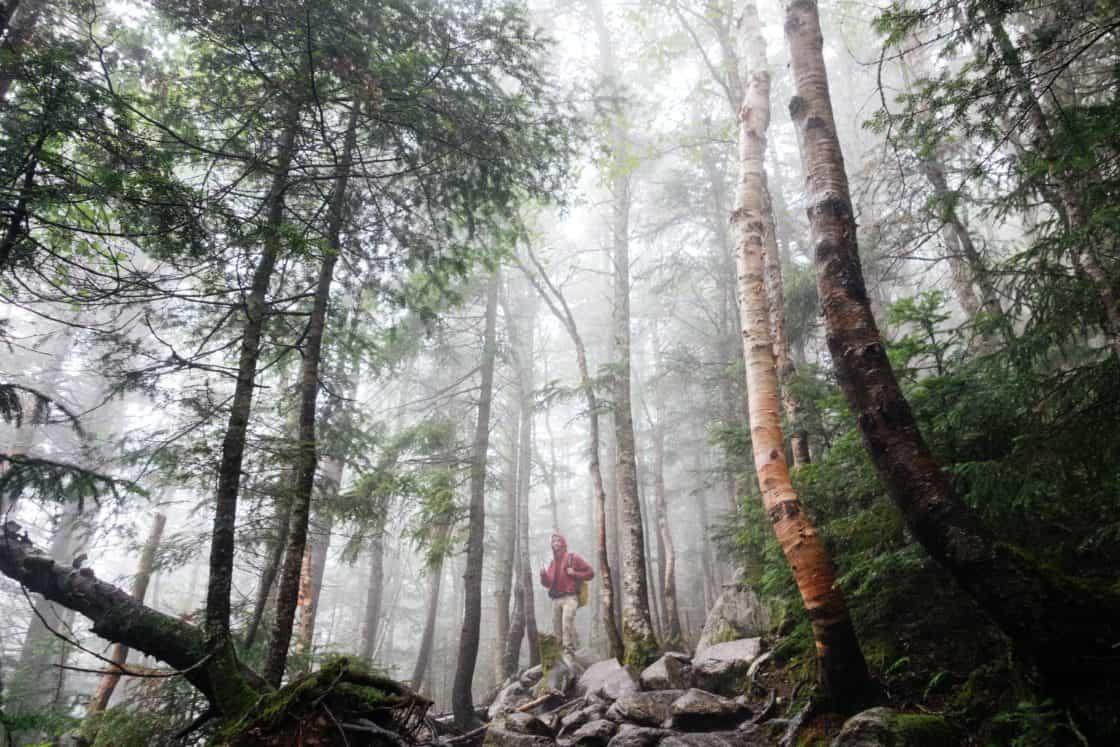 Mann mit Rucksack im Wald