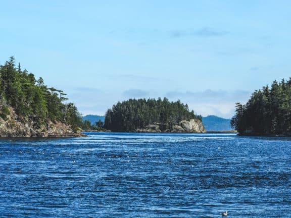 Inselchen im Johnston Strait