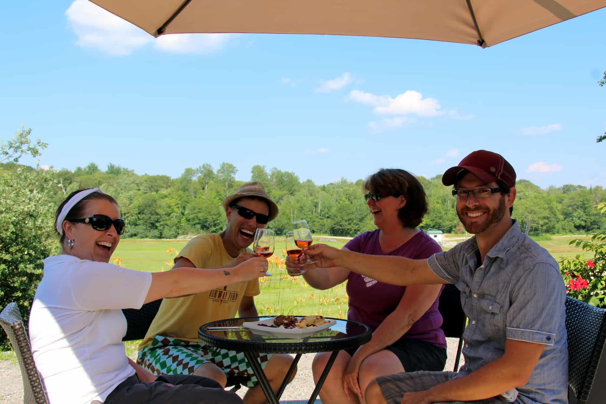 Vier Personen genießen einen Cranberry-Wein