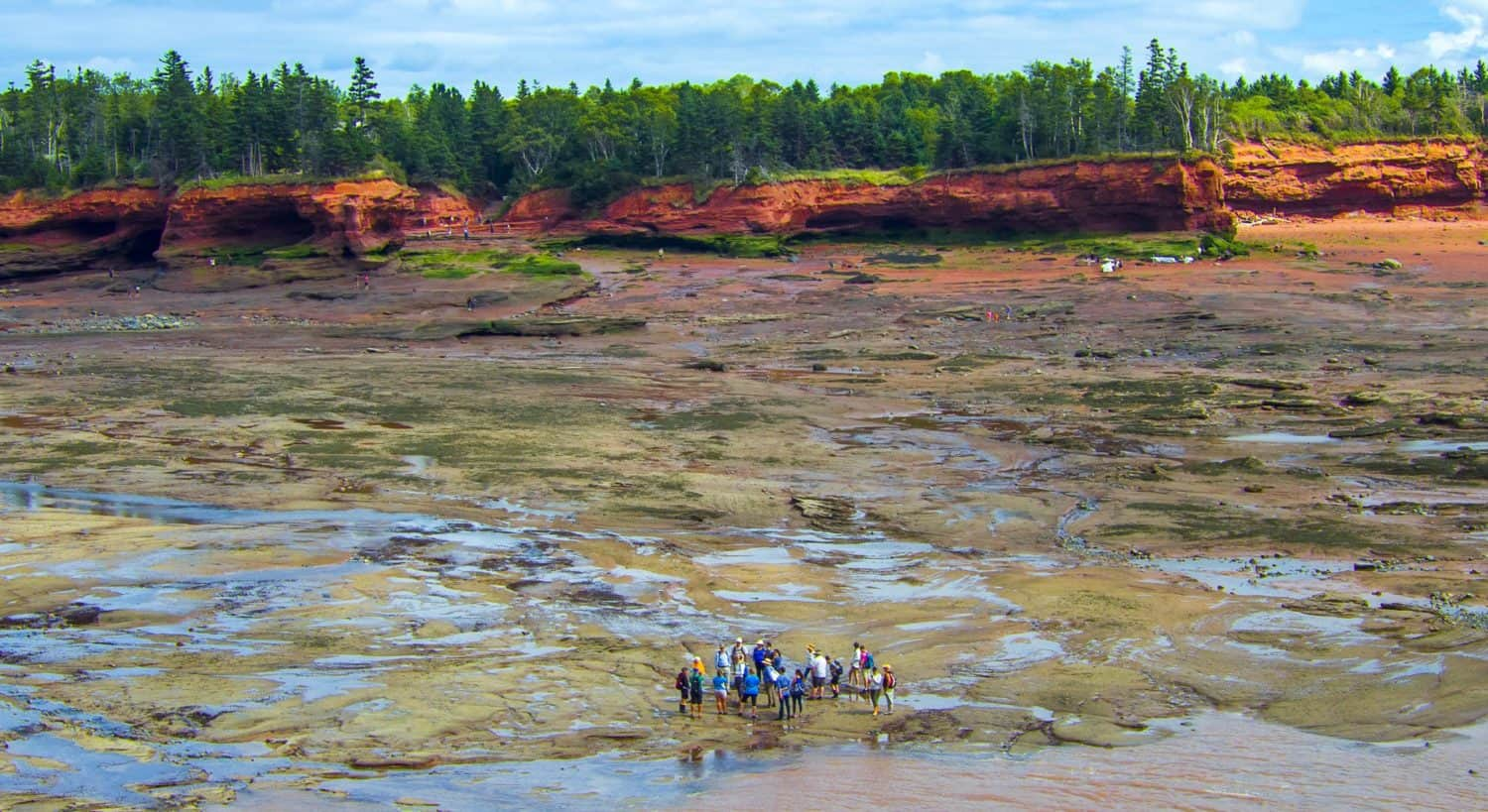 Ozeanboden Bay of Fundy