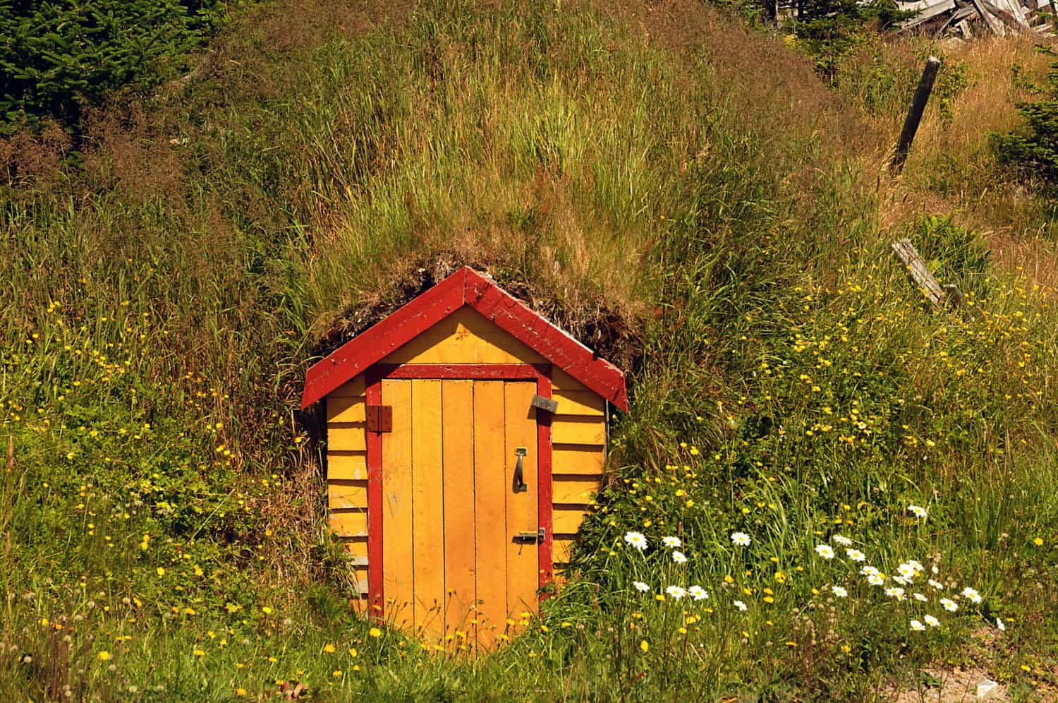 Root Cellar in Elliston