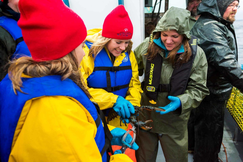 Hummer von drei Frauen gefangen
