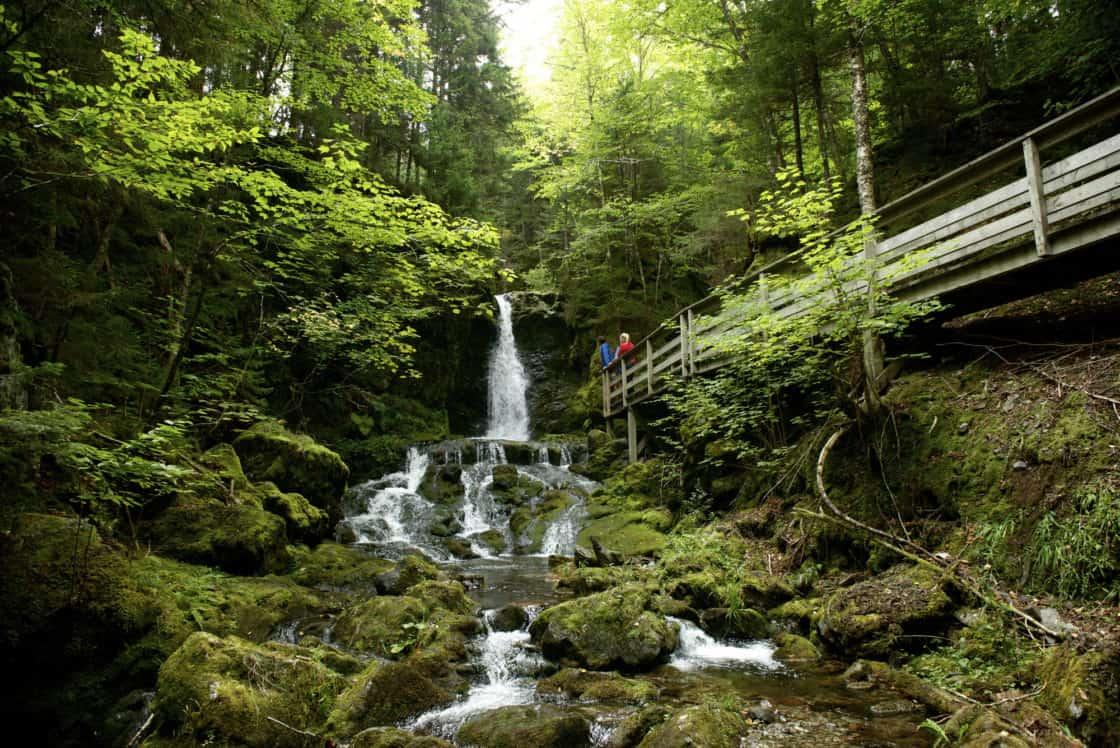 Fundy Park New Brunswick
