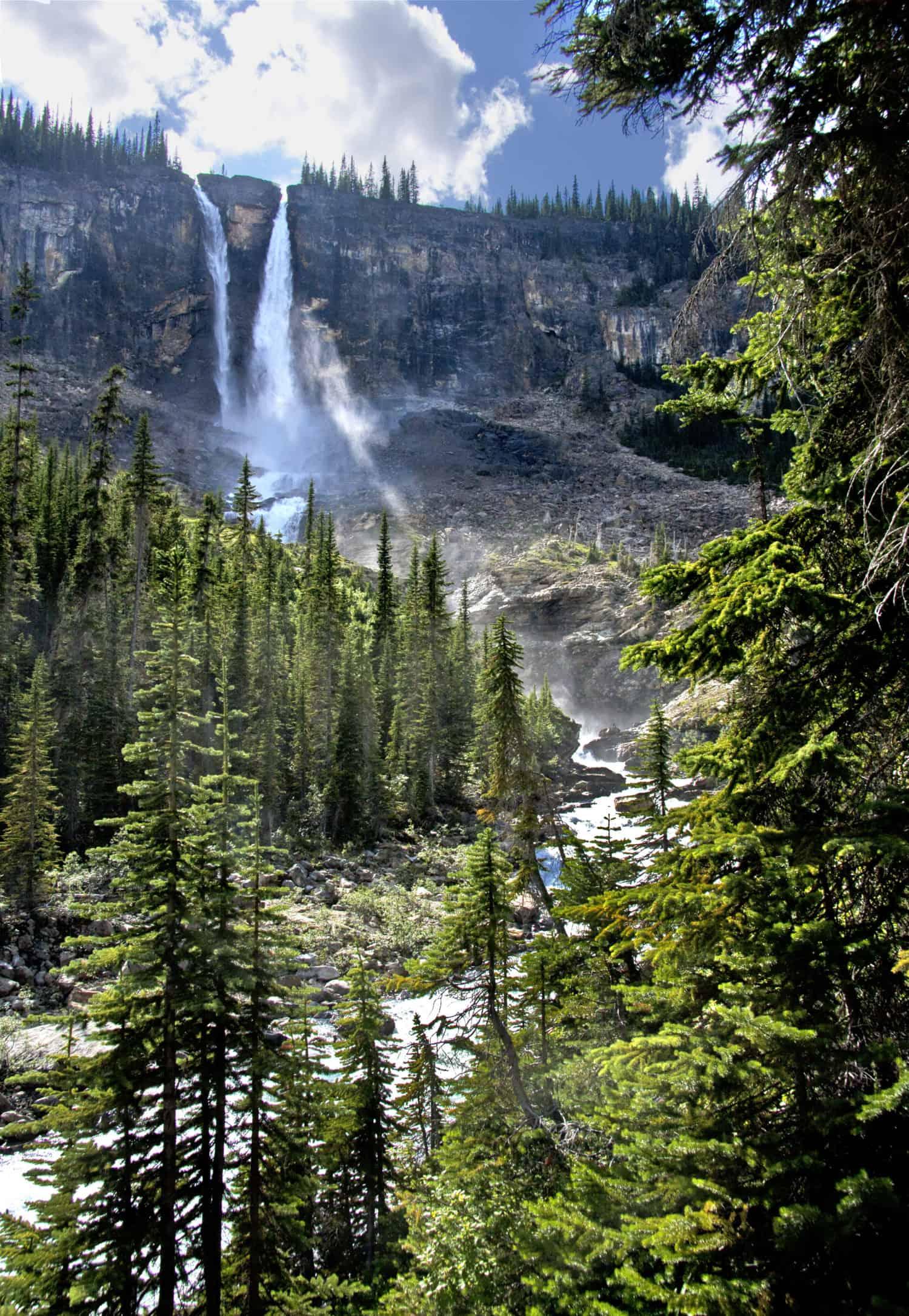 Twin Falls im Wald