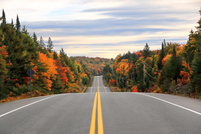 Straße durch den Algonquin Provincial Parkim Herbst, Ontario, Kanada