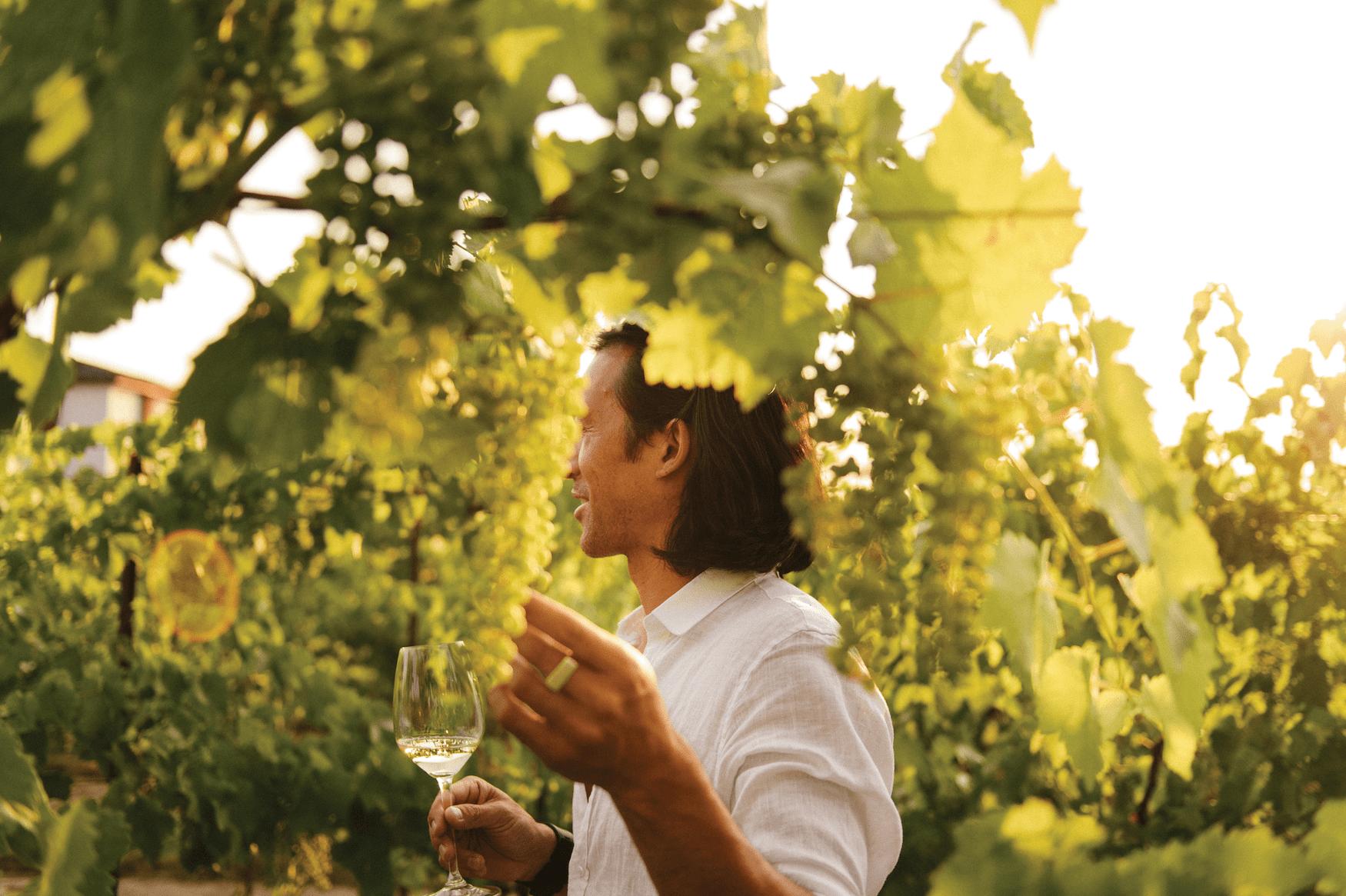 Mann mit Weinglas auf Weingut in Kanada