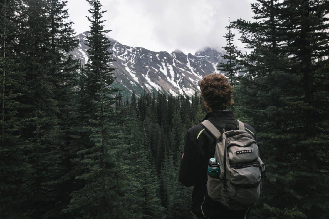 Mann wandert in Kanada. Im Hintergrund Tannenbäume und ein Berg mit Schnee bedeckt.