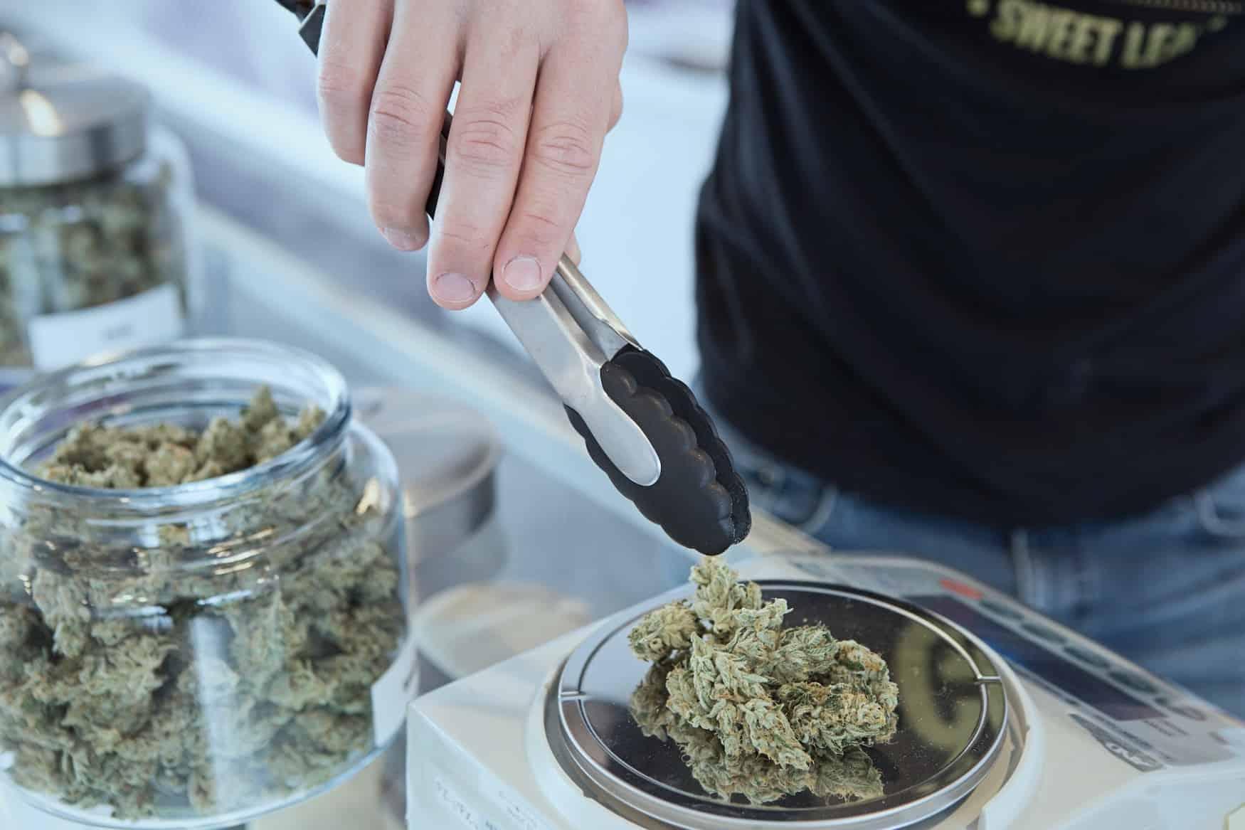legaler Kauf von Cannabis in Kanada