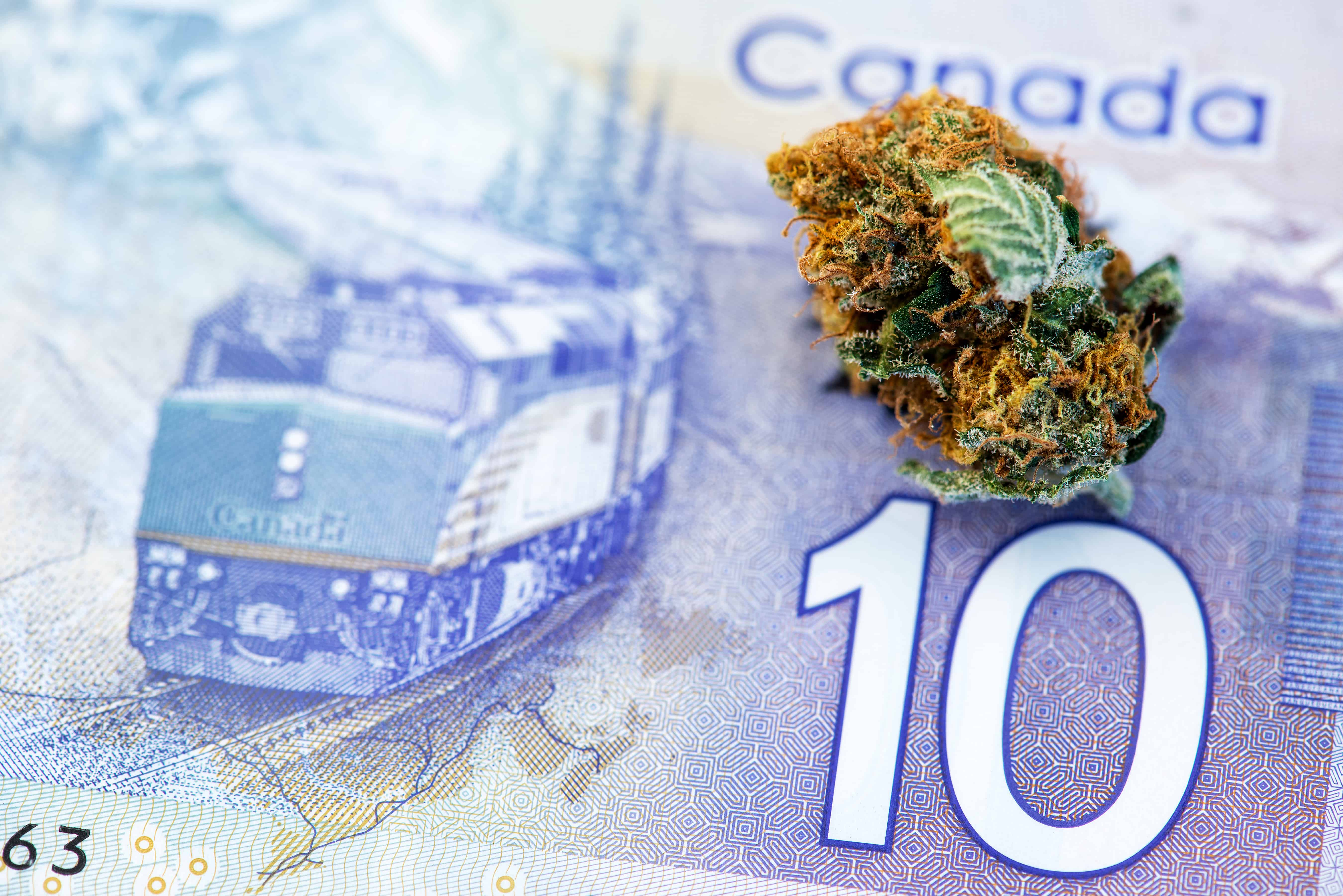 Marihuana Bud auf 10 Kanada-Dollar