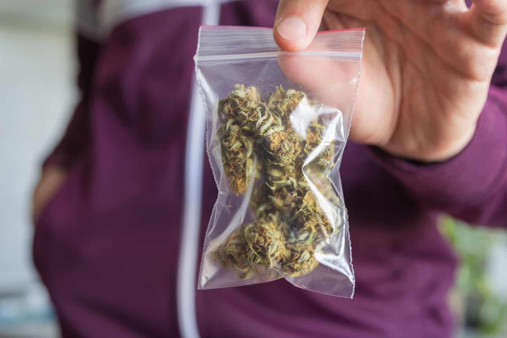 Mann, der Cannabisblüten im Baggy zeigt.